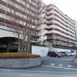 シーズガーデンパラディス町田3階(リノベーション)🍀仲介手数料無料+キャッシュバックキャンペーン対象物件🍀